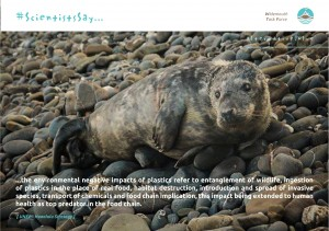 ALTERNATIVE-environmental-impacts-plastic-1-300x211 ScientistsSay campaign